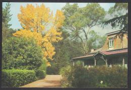AUSTRALIA POSTCARD - Gorge Tea Rooms - Launceston, Tasmania ** - Lauceston