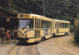 CPM TRAMWAY BRUXELLES BRUSELAS BELGIQUE INAUGURATION 1869 ELECTRIFICATION 1894 TERMINUS LIGNE 44  AOUT 1990 - Tramways