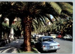 CHIAVARI (Genova) - VIALE DELLE PALME - VIAGGIATA 1964 - Italia
