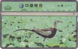 = TAIWAN -  R00R005  =  MY COLLECTION - Taiwan (Formose)