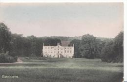 Dorset Postcard - Cranborne   3661 - England