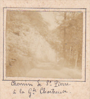 AY- 2 Photos Stereoscopiques 40x45mm Vers 1900. Aix Les Bains, Grande Chartreuse, Chemin Saint Pierre Pont St Bruno - Photos Stéréoscopiques
