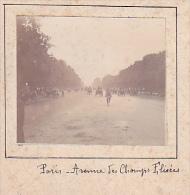 BK- 2 Photos Stereoscopiques 40x45mm Vers 1900. France - Paris Champs Elysées - Trianon Hameau Presbytere - Photos Stéréoscopiques