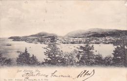 22026 Thomazi - Bar Harbor, Me -2373 National Art Views. NY -1904