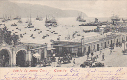 21996 Thomazi -  Puerto De Santa Cruz De Tenerife. 1901 Sans éditeur -salon De Bains - Tenerife