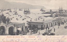 21996 Thomazi -  Puerto De Santa Cruz De Tenerife. 1901 Sans éditeur -salon De Bains
