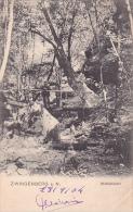 21997 Thomazi -  Zwingenberg - Die Wolfschlucht -1904. Un Personnage Sur Le Pont - Allemagne