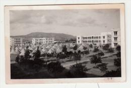 Algérie - Ain Sefra - Photo Format 9.6 X 6.2 Cm - Africa