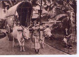 Ile De Ceylan..Hôpital De Welisara-Ragama..animée..Soeurs Providence..Ruillé-sur-Loir..chariot De Boeufs - Sri Lanka (Ceylon)