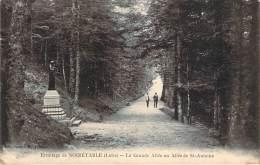 42 - Ermitage De Noirétable - La Grande Allée Ou Allée De St-Antoine - Noiretable