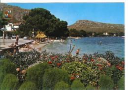 MALLORCA - Puerto Pollensa - Mallorca