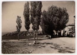 Postcard - Ohrid       (V 20264) - Macédoine