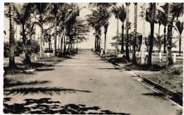 Carte Postale - Gabon Port-Gentil L'allée Des Cocotiers - Gabon