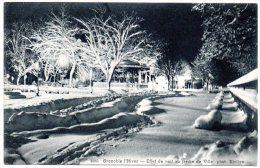 CP, 38, GRENOBLE, L'Hiver, Effet De Nuit Au Jardin De Ville, Vierge - Grenoble