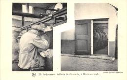 Industries : Taillerie De Diamants , à Westmeerbeek, Nels N° 29 - Hulshout