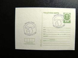 Card From Bulgaria, Stationery Special Cancel Mushrooms 1987 - Ganzsachen