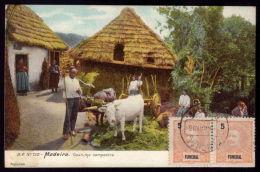FUNCHAL / MADEIRA  / PORTUGAL Postal Colorido Costumes Campestres. CAtrelado Do Bois. Old Postcard OX CART - Madeira
