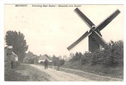 Meerhout : De Molen - Windmolen - Moulin .  Steenweg Naar Gestel  . Feldpost ( Zie Scan ) Topkaart  Staat  : Zeer Goed . - Meerhout