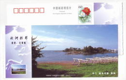 View Of Finland Capital Helsinki Seashore,China 2005 European Landscape Advertising Pre-stamped Card - Holidays & Tourism