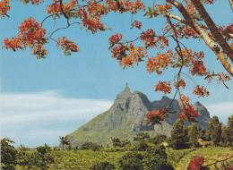 ILE MAURICE,MAURITIUS,archipel Des Mascareignes,océan Indien,ile Volcanique,MONTAGNE PIETERBOTH,ETE - Mauritius