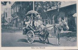 Inde, Benares, Ekka Cart (4904) - India