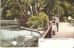 Basel  Zoo - BS Basel-Stadt