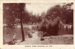 Buenos Aires Palermo Un Lago - Argentinië
