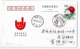 Giant Panda,China 2013 Lushan Earthquake Relief Commemorative Postmark Used On Card - Geology