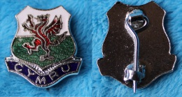 Pin's Broche Dragon CYMRU Rugby League - Rugby
