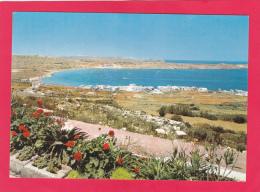MELLIEHA BAY MALTA,NOT POSTED,U4. - Malta