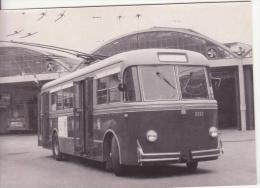 Filobus Serie 2226/2230 - Autobus & Pullman