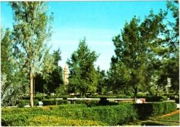 Riyadh - Public Gardens - Arabie Saoudite