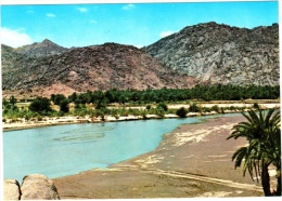 Wadi Najran - Saudi Arabia