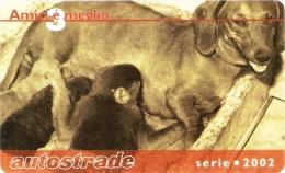 *ITALIA: VIACARD - AMICI E' MEGLIO (€. 50)* - Usata - Non Classificati