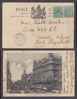 POINT NATAL C.d.s.: MY 11 1904 : Cape Town Post Card, Pair OfGB 1/2d, Tied + Cancelled PAQUEBOT - Zuid-Afrika (...-1961)