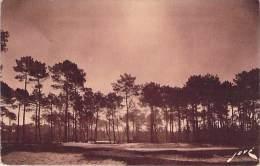 HOSSEGOR. Au Golf D'Hosségor Le Green N°18. - Hossegor