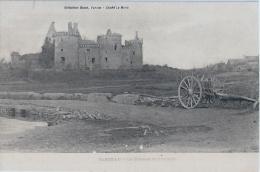 SARZEAU - Suscinio - Charette (cliché Avant 1904) DAVID - LE MERLE - Sarzeau