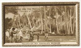 Iles Wallis Paysage Canaques Population Douce Et Intelligente Chromo Suchard 6 Cms Par 10 - Chromos