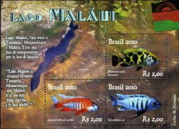 Brazil 2010-Lago Malawi  M/Sheet - Unused Stamps