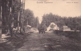 Rhode-Saint-Genèse 23: Grande Espinette. Avenue St Michel 1907 - Rhode-St-Genèse - St-Genesius-Rode