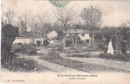 CPA ALFORT (94) ECOLE NATIONALE VETERINAIRE - JARDIN BOTANIQUE - Maisons Alfort