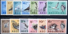 -Ascension   76/89** - Ascension (Ile De L')