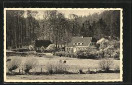 CPA Skovkroen, Ronshoved Pr. Rinkenoes - Dänemark