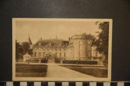 CP, Publicité, Medicaments DULCI E Millet , 78, Le Chateau De Rambouillet N°208 - Publicité
