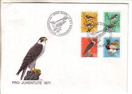 GOOD SWITZERLAND FDC 1971 - PRO JUVENTUTE - Pro Juventute