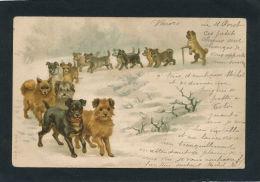 CHIENS - DOG - Jolie Carte Fantaisie Cortège De Chiens Dans La Neige - Chiens