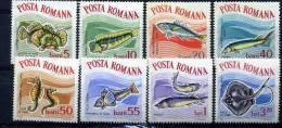 Roumanie  :  Yv  2001-08  **    Poisson - Fish - 1948-.... Repúblicas