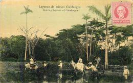 CUBA  Lagunas De Arimao Cienfuegos  Hunting Lagoons Of Cienfuegos  ESPERANTO   2 Scans - Cuba