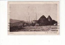 Royaume Du Lesotho - Lessouto, Aloès Et Huttes Indigènes - Lesotho