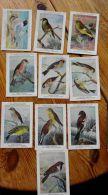 Chromos Fort Oiseaux De Belgique Série 35 Images 341 à 350 - Other